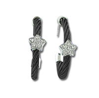 Black Stainless Steel Diamond Star Earrings