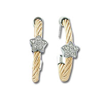 Rose Stainless Steel Diamond Star Earrings