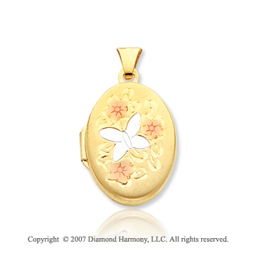14k Yellow Gold Floral Butterfly Enameled Oval Locket